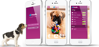Petzi Connect Pet Monitor Gadget
