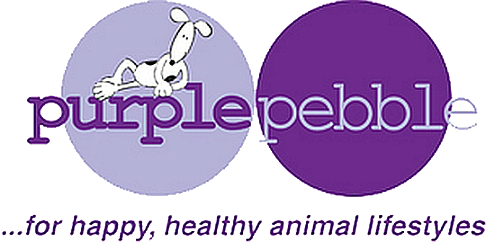 Purple Pebble Toys