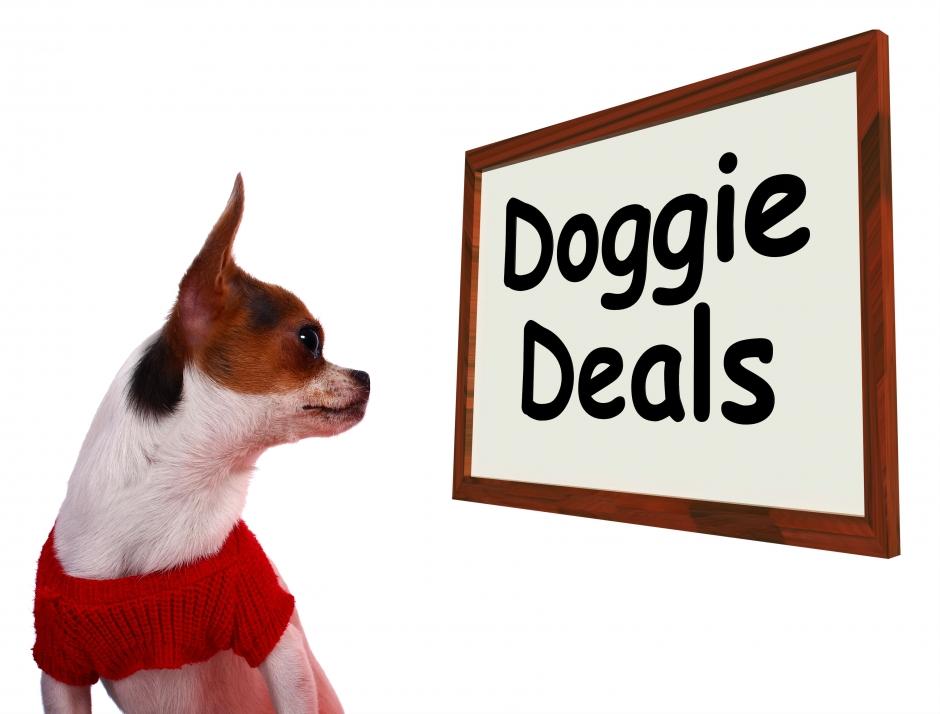 Favorite Stores & Deals