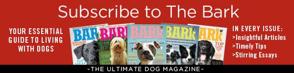 The Bark Horizontal