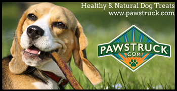 The Biggest Craze in Natural Dog Chews
