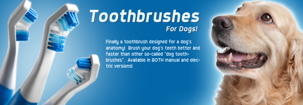 Pet Tech – Zututh Toothbrush