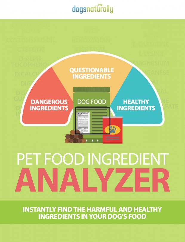 Is Your Dog's Food Toxic?